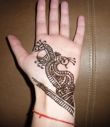 "<font size=""1"" face=""Arial"">Mehendi (henna).</font>"