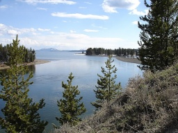 "<div><font size=""1"">Řeka ustí do Yellowstonského jezera.</font></div>