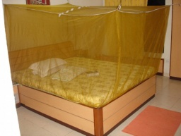<div>Spíme s moskitiérou.</div>