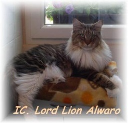 IC.Lord Lion Alwaro,PL