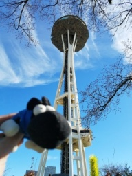 a Space Needle.jpg