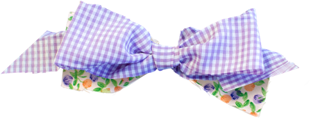 CharlieNco_BWL_Bow Purple Orange.png