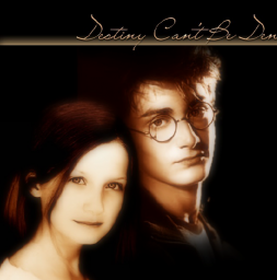 HARRY_Y_GINNY_4EVER.png