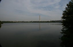 Obelisk a jezírko.<br />___________<br />Monument and Tidal Basin.