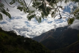 2012_05_16 Inca Jungle 2 den 055.jpg