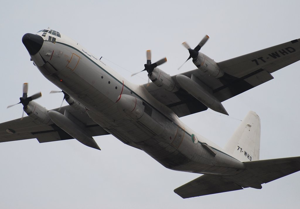 C-130H-30 Hercules Algeria Air Force