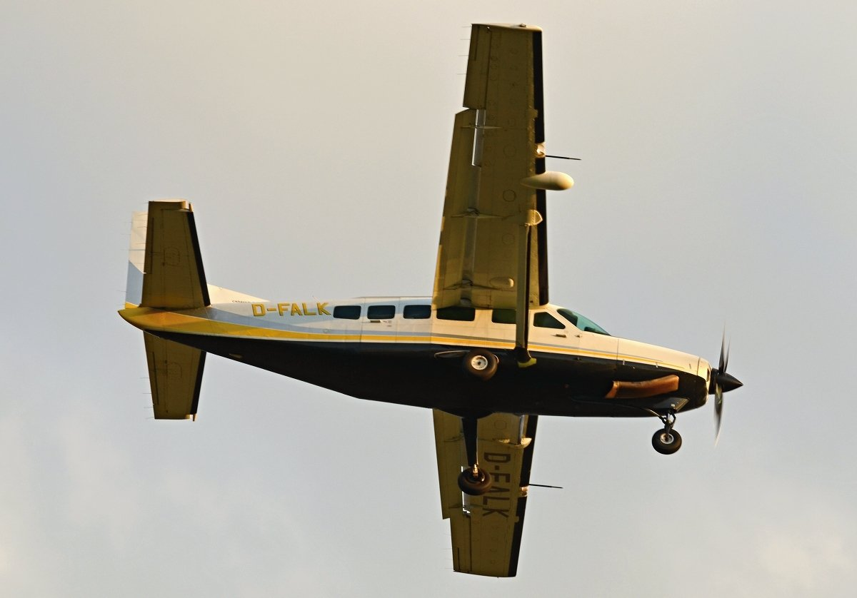 Cessna 208 Caravan    Businesswings  D-FALK